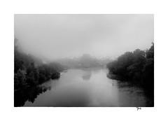 Un lger souffle sur le Doubs  Rivotte (gravelin.yves) Tags: arbre brumes doubs flore genre paysage projet rivotte vide d810 nikon besanon pniche rivires vhicule