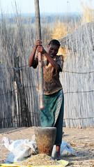 DSC_9854 (stephanelhote) Tags: portraits enfants paysages etosha okavango flore fleuve afrique faune namibie zambie himbas zambze