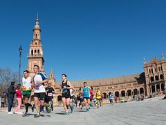 Zurich Maratón de Sevilla6