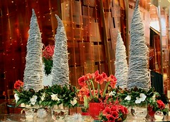 Contemporary Christmas Decoration