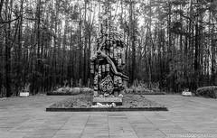 DSC_1672_LR4 (Photographer with an unusual imagination) Tags: ukraine zhitomir oblast  2013  zhytomyr    zhytomyrska