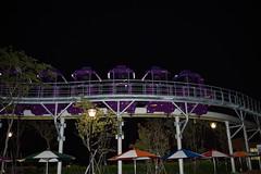 DSC_3145 (ppeng@yahoo) Tags: night nikon taipei 台北 2470 d810 taipeichildrensamusementpark 兒童新樂園 台北兒童新樂園