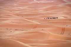 dune (Mariasme) Tags: gamesweep mpt407 matchpointwinner gamex gamex2 twothumbsup friendlychallenges diamondaward monthlygamewinner starsaward 15challengeswinner morocco desert