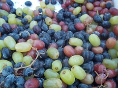 Table and Wine Grapes I (time_anchor) Tags: fruits foods vineyards ingredients grapes yeast sultanas winemaking dandelionwine tablegrapes healthfoods thompsonseedless sultaninas raisinmaking vivisvinifera