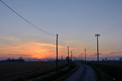 Country road (STE) Tags: road sunset sky landscape photography photo strada tramonto foto photographer photos country campagna cielo fotografia pylons paesaggio stefano fotografo tralicci 35f2 trucco piloni zush d7100 stefanotrucco