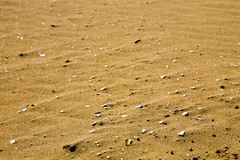 Broken seashells in the sand (Raoul Pop) Tags: travel winter italy broken sand europe italia seasons cities places it rimini emiliaromagna