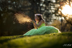 Fairy dust (JeffHallPhotos) Tags: forest photoshop canon wings woods nikon long exposure dress princess mark iii tinkerbell arboretum disney iso fairy brushes shutter 5d uc dust davis hdr 135mm 200mm