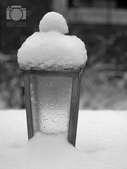 Snowy lamp (Olympus Pen and analogue Photographer) Tags: snow takumar olympus 55mm smc epl2