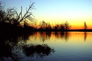 Early morning sunrise at the Bolsa Chica Wetlands In Huntington Beach California. Canon T3i