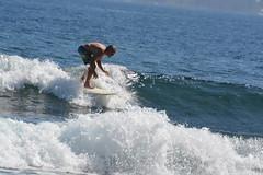 DSC_0057 (aliciadesign) Tags: surf whales bigisland honolii