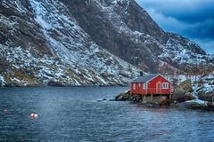 Nusfjord (swissgoldeneagle) Tags: winter red house rot norway skandinavien norwegen haus d750 scandinavia lofoten nordland nusfjord