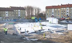 Elineberg - November 2014