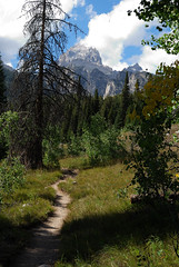 Taggart Lake Trail (mike_jacobson1616) Tags: sky mountain lake mountains forest nationalpark moss lakes trail alpine wilderness peaks tetons grandteton tetonrange grandtetonnationalpark taggartlake middleteton southteton taggartlaketrail avalancecanyon