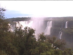 Iguazu Falls Through the Trees