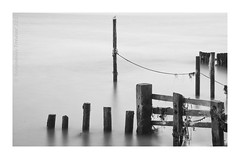 JUMBLE  {Explore #212} (frattonparker) Tags: longexposure monochrome raw seagull tripod pole isleofwight ropes groyne englishchannel lamanche remoterelease cs6 nikkor18300mmvr bw10stopndfilter bw110ndfilter nikond5000 silverefexpro2 colorefexpro4 btonner frattonparker