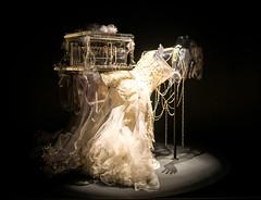 Björk - Vespertine Dress (Quartley) Tags: nyc newyork moma museumofmodernart bjork björk matthewbarney vespertine alexandermcqueen