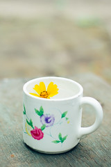 A little flower swim on the water in colorful cup (ddanilejko) Tags: flowers light summer white macro cup nature water floral beauty yellow swim outdoors daylight wooden cozy colorful warm soft mood bright little bloom teacup liquid aroma cosiness