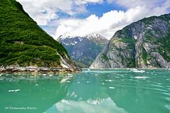 Northern View (Jeff M Photography) Tags: ocean blue usa mountain snow color green water beauty alaska outdoors nikon view scenic glacier juneau inlet fjord iceberg nikkor tracyarm holkhambay stephenspassage glacialsilt jmphotography