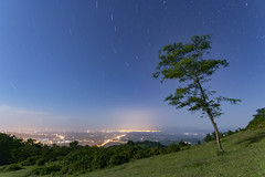Star Trail, Bagdati . Georgia (PFgio) Tags: longexposure blue sky star startrail trees green colorfull nightphotography sigma1020 canon 700dt5icanon grass round