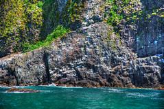 Kenai Fjords National Park (Bob.Z) Tags: art alaska us unitedstates centre national seward fjords dominion fairmonthotel vancouverartgallery hotelvancouver nvancouver vancouverfairmont gallerytoronto usausalaskasewardkenaifjordnationalparkkenai parksealsglaciers torontodomi