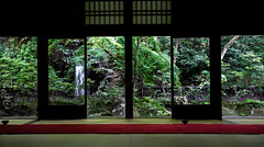 Waterfall View at Nanzenji Temple (KellarW) Tags: nanzenjitemple japan kyotojapan kyoto garden waterfall greenery green red view buddhism zen zengarden roomwithaview japanese japanesescreen japanesegarden temple japanesetemple
