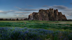 Grazing at the Rock (dlemming262) Tags: deer grazing morning sunrise smith rock state park terrebonne bend oregon phoenix buttress top broken sister south north clouds lenticular