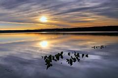 Silver Lining (melliottohaire) Tags: sunrise silver hudsonriver hightide ulster