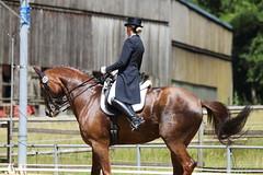 IMG_4552 (dreiwn) Tags: horse pony horseshow pferde pferd equestrian horseback reiten horseriding dressage reitturnier dressur reitsport dressyr dressuur ridingclub ridingarena pferdesport reitplatz reitverein dressurreiten dressurpferd dressurprüfung tamronsp70200f28divcusd jugentturnier