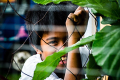 Behind the Wires (ariel gitana) Tags: sorsogoncity bicol albay mayonvulcanobaconsorsogonarielgitanaphilippinelandscapericefieldkabataangpinoyteampinaspinoyphotographerchangeiscomingpanorama macro howtobeagreatphotographer changeiscoming bestportrait laronglahi larongbatangpinoy bestinbicol nikond7100sampleshot tamron18200mm teampinas teampinoy ariel gitana bestinrawisbacon filipinopeople depthoffield bestportraitever