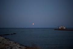 """""""Il Baretto"""" #marinaromea #nikondf #summer #sea #moonlight (lucagiuliani1) Tags: marinaromea nikondf summer sea moonlight"""