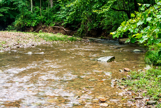 Anderson River - Hoosier National Forest - July 22, 2016