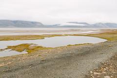 Arctic Tundra III (danielfoster437) Tags: adventure arctic arcticcircle arcticsummer arctictundra extremeterrain landscape mountain nature outdoors spitsbergen summer svalbard svalbardsummer terrain tundra wilderness
