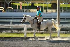 IMG_2562 (SJH Foto) Tags: horse show hunter jumper class girls teenage teen riders action shot tweens