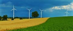 Gewitterstimmung (zikade) Tags: windkraftwerke felder weizenfeld wiese gewitter bauland hohenlohe erlenbach badenwrttemberg energie hngheim