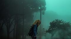 Shade (Davide Carovana) Tags: photography photo landscape potr tree mountain forest fog light sicily italy