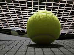 Anyone for tennis? (marcy0414) Tags: tennisball tennis racket racquet shadow macro macromonday macromondays summer summerolympicsports ball explore explored