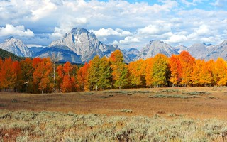 Grand Tetons near Oxbow Bend