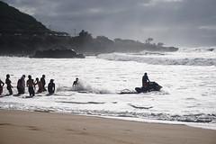 DSC05066 (neilreadhead) Tags: awt1 hawaii oahu waimeabay