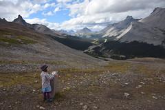 Parker Ridge, Canadian Rockies (barry gahan) Tags: canada canadianrockies icefieldsparkway