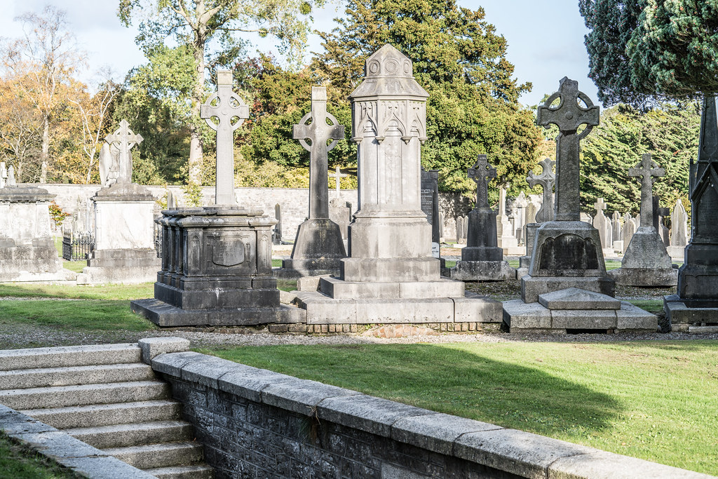 A QUICK VISIT TO GLASNEVIN CEMETERY[SONY F2.8 70-200 GM LENS]-122118