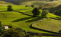 Kettlewell, Yorkshire Dales (the governor) Tags: yorkshire dales stone walls green grass barns shadows