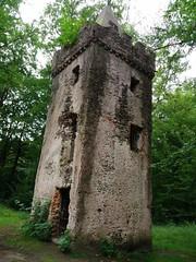 Wolfgang-Hanau Forest, Germany (asterisktom) Tags: rotelache wolfgang hanau forest wald cloister limes roman 2016 trip2016kazakheuro july germany phone