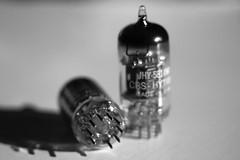 CBS-Hytron 5814WA (Sean Anderson Classic Photography) Tags: sonya700 industar61lz50mmf28 industar61 m42 5814 5814wa tube vacuumtube cbshytron preamptube 12au7