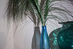 mare nostrum (bruja420) Tags: blue vase