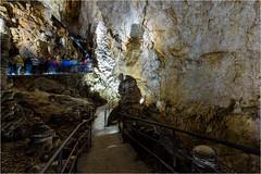 161016 694 grotta gigante (# andrea mometti | photographia) Tags: grotta gigante trieste sgonico caverna stalagtiti stalagmiti umidit