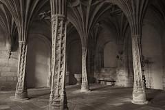Monasterio de Santa Maria de Oseira (diocrio) Tags: monasterio monasteriodesantamara oseira ourense sxvxvi salacapitular c1 galicia