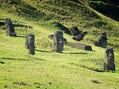 Moais in Rano Raraku quarry - Rapa Nui - Eastern island - Chile (pacoalfonso) Tags: moai statue ruin rano raraku quarry pacoalfonsocom chile rapa nui eastern island pacific travel