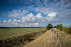 Devil's Dyke Walk-8 (adambowie) Tags: devilsdyke cambridgeshire newmarket