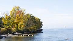 Les rives du Lac en Automne (Elyane11) Tags: lac automne couleurs arbres rives laclman