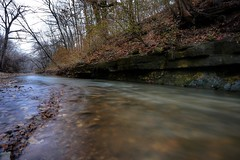 Day 19...rainy, overcast skies, flowing rivers, rich autumn colors and long exposure (drjoshferrell) Tags: longexposure nature rain forest canon river stlouis wideangle 365 stl day19 darkforest richcolors canon1740 canonphotography grantstrail canon6d